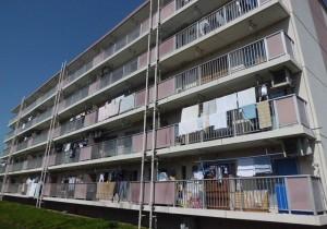 横川町住宅(9~16号棟)外壁塗装・外壁補修・鉄部塗装・その他工事